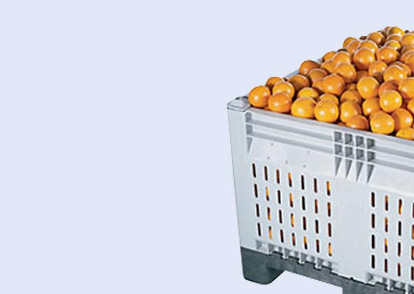 Industriel vask af plastemballage til fødevarer